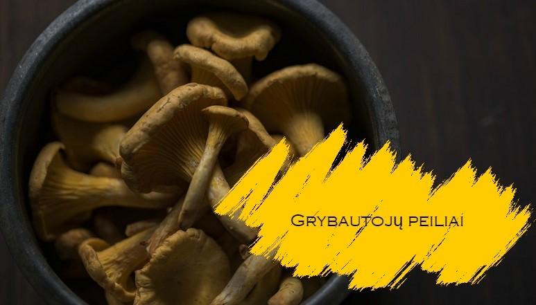 grybautoju-peiliai